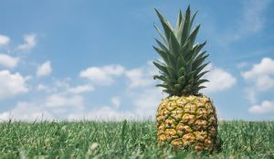 Pineapple-for-Natural- abortion